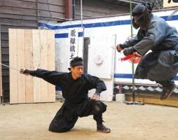 Iga-ryu Ninja Show