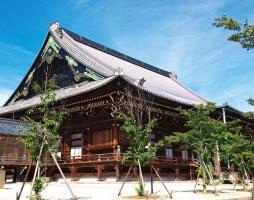 Shinshu Takada Honzan