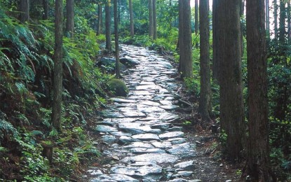 三重を知ろう: 東紀州