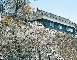 ruins-ofkameyama