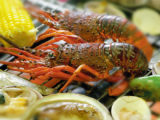 Conociendo Mie: Delicias Gastronómicas de Mie