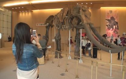 2014年4月19日(土)「県民の日」記念事業と三重県総合博物館MieMuの開館