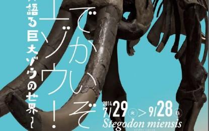 9月28日までMieMu三重県総合博物館企画展「でかいぞ!ミエゾウ」開催中
