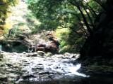 Exploring Mie – Akame Shijyu Hachi Taki