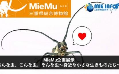 平成27年7月11日(土)~8月30日(日)の期間中にMieMuで昆虫に関する企画展示会が開催されます。