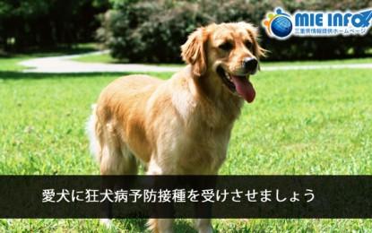愛犬の狂犬病予防接種について