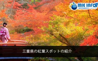 三重県の紅葉スポットの紹介について