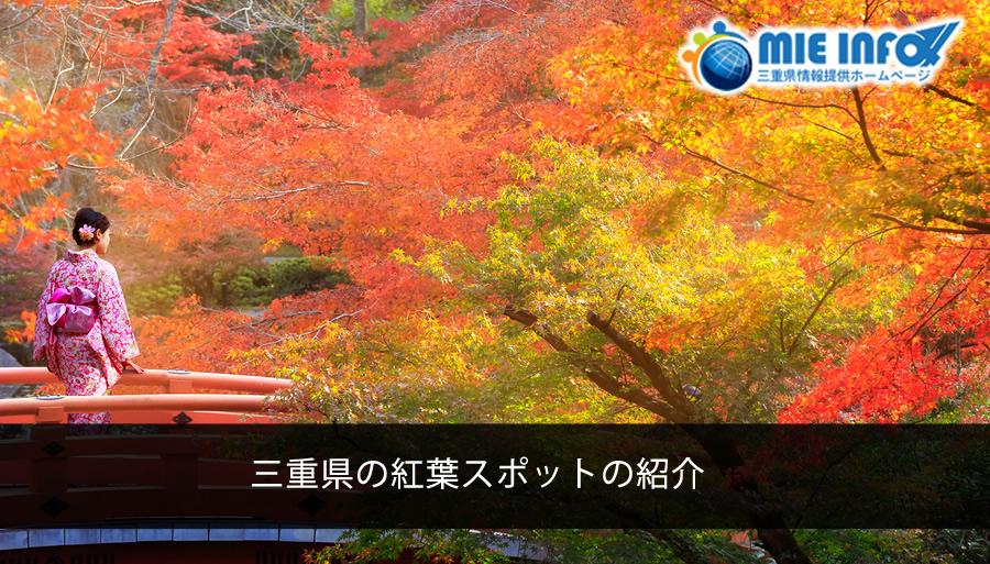 japan-mieken-autumn
