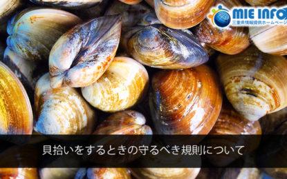 貝拾いをするときの守るべき規則について