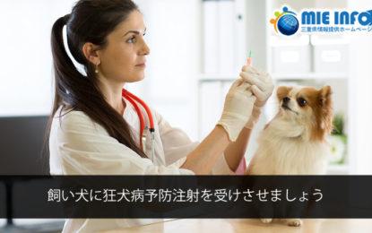 飼い犬に狂犬病予防注射を受けさせましょう